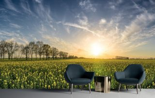 Beautiful sunset wall mural behind chairs and a side table.