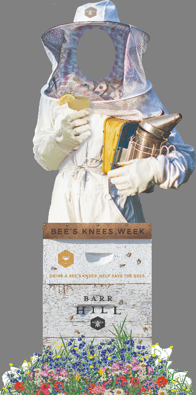 Life-size beekeeper hole-in-head cardboard cutout for Barr Hill Bee's Knees Week 2019.