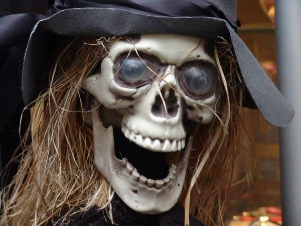 Scary skull Halloween mask.