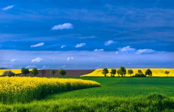 Spring fields and sky.